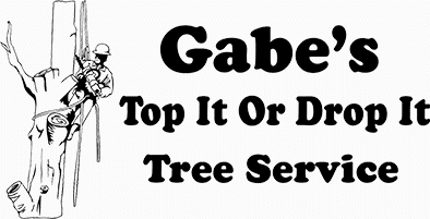 Gabe's Top it or Drop Tree Service
